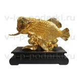 Большая золотая рыба Арована
